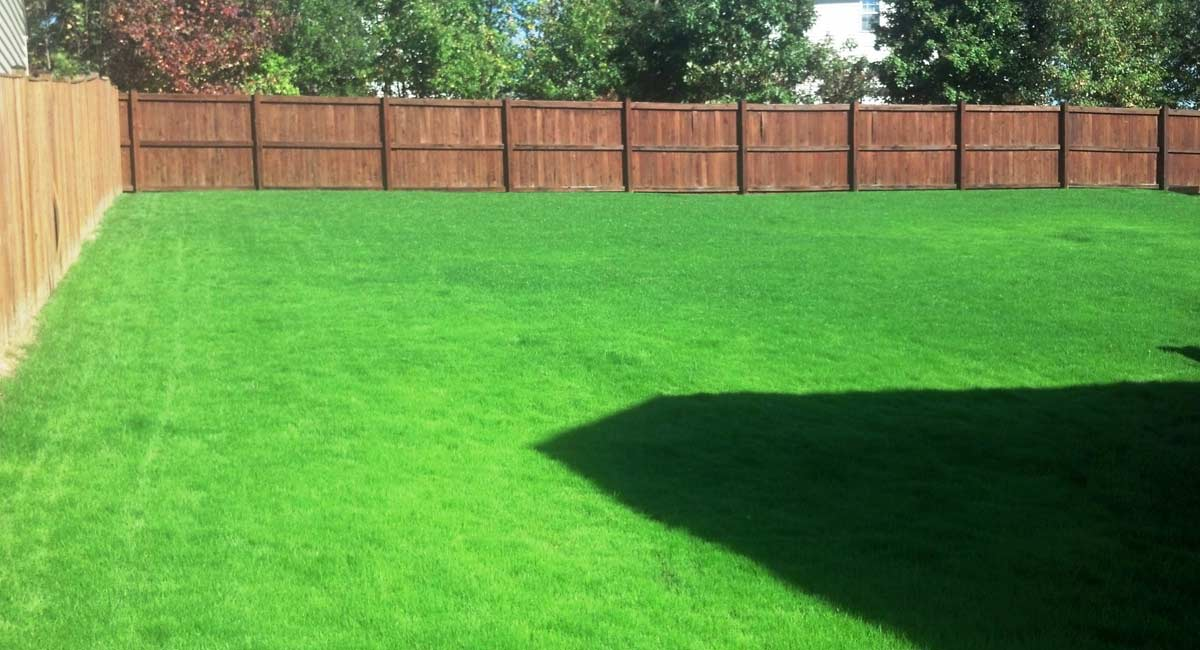 Lawn Care Southern Maryland